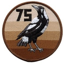 D093 (75 Sqn – Magpie (Brown-Tan) (Small)