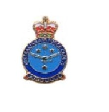 L263 - AAFC Crest
